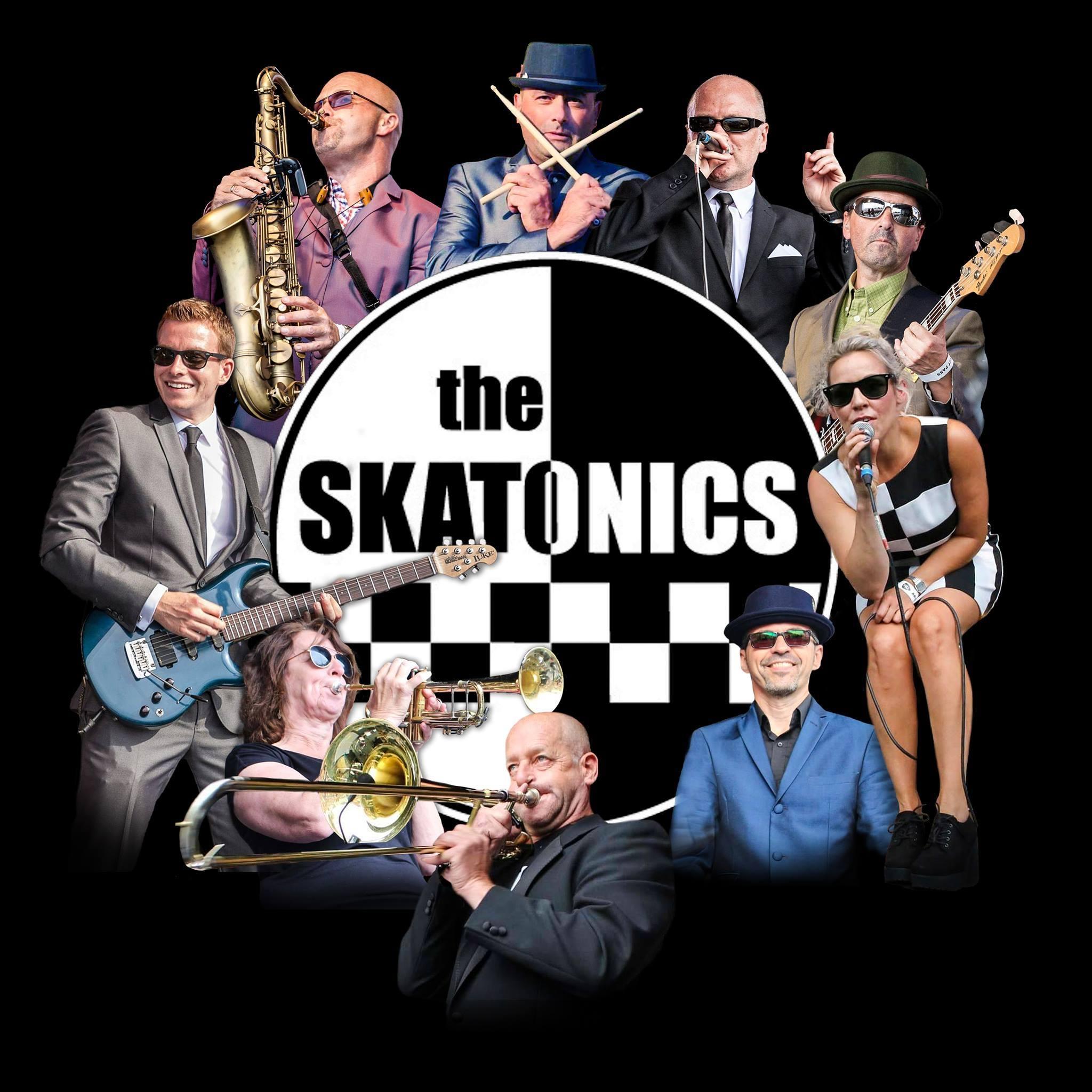 'The Skatonics' banner image