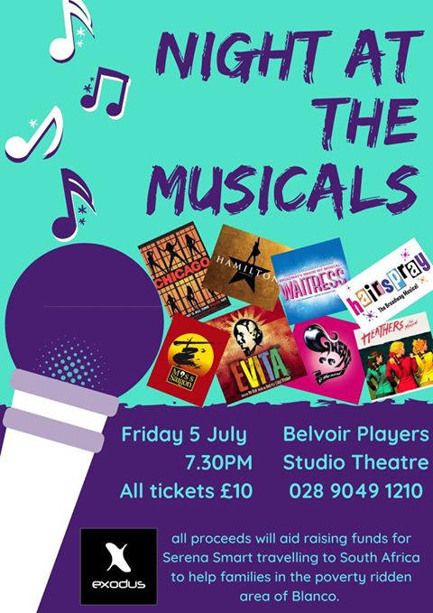 Night At The Musicals banner image