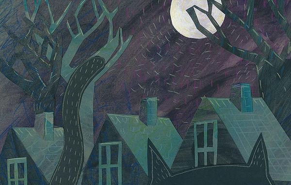 Midnight banner image