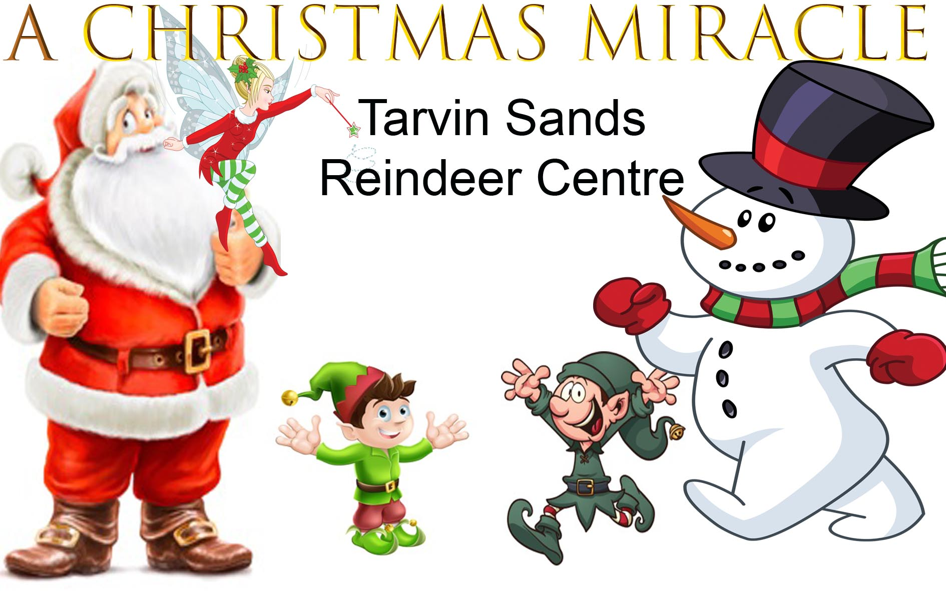 A Christmas Miracle.A Christmas Miracle At Tarvin Sands Fishery And Reindeer