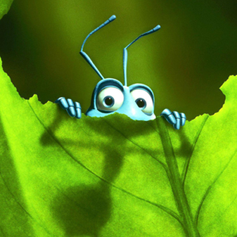 Image Result For Bug A Booa