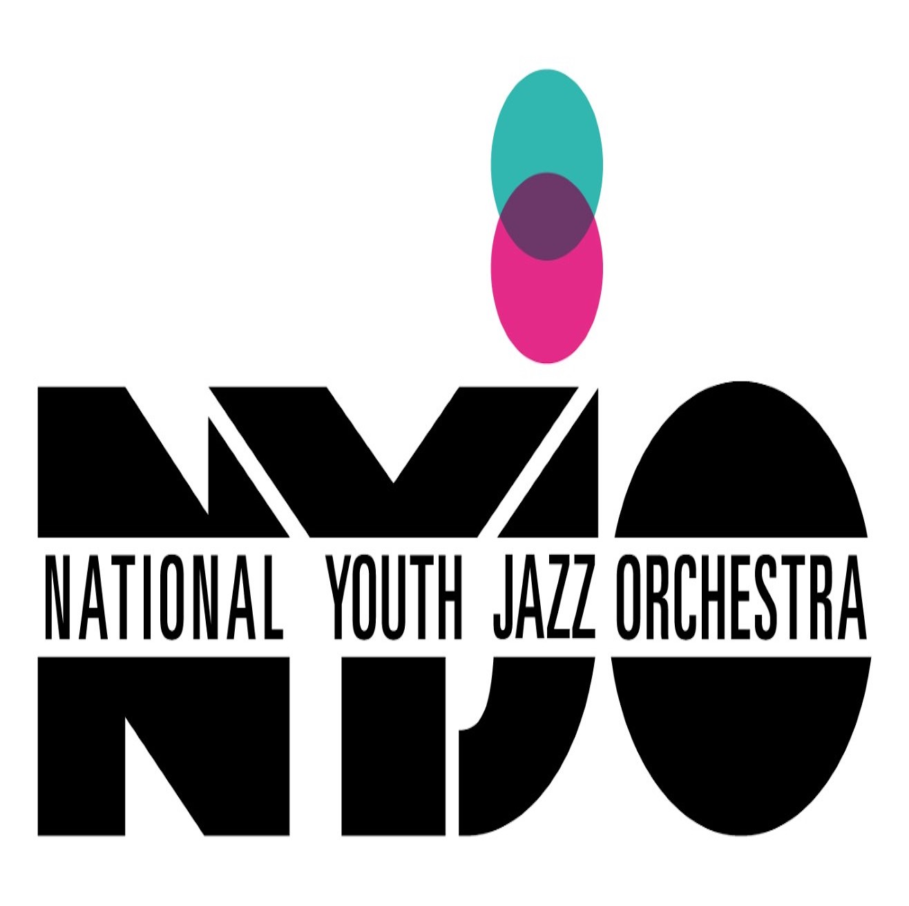 The National Youth Jazz Orchestra banner image