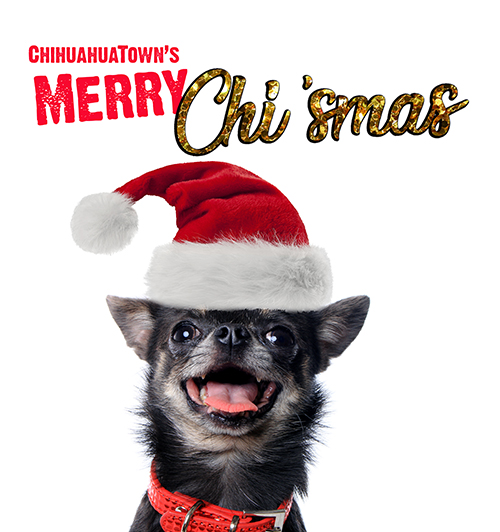 ChihuahuaTown's Merry Chi'smas banner image