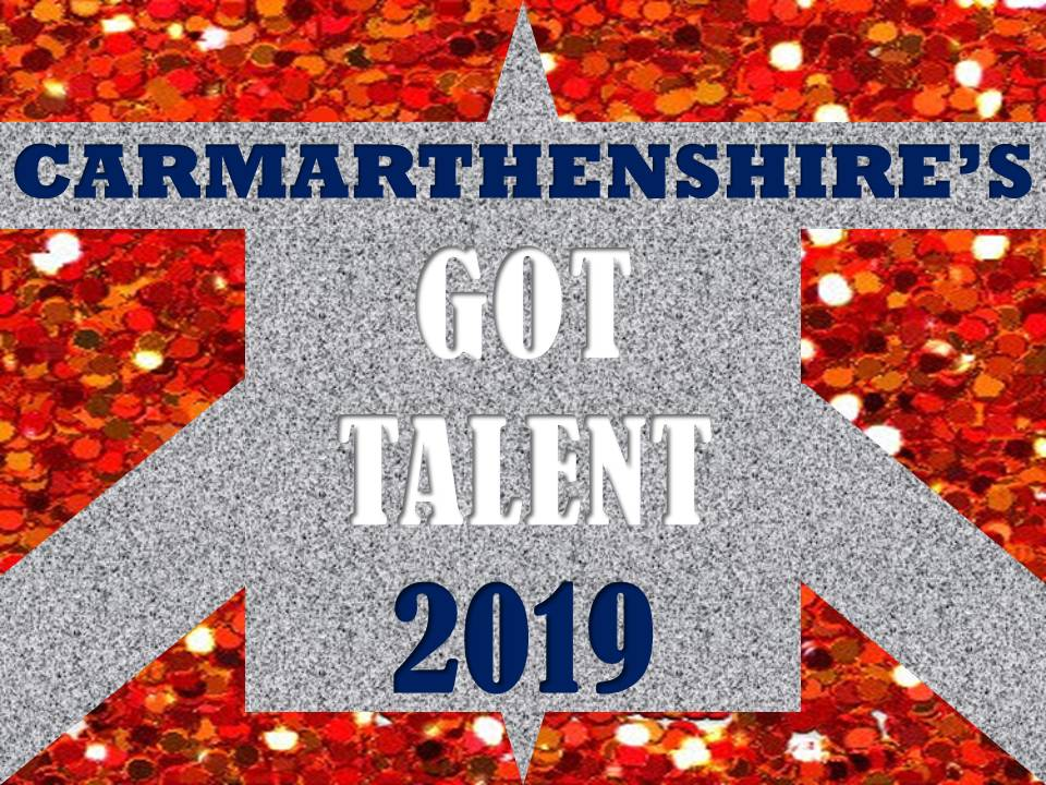 Carmarthenshire's Got Talent (AUDITIONS) banner image