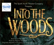Spark Youth Theatre Company - Into The Woods banner image