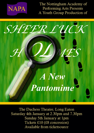 'SHEER LUCK' HOLMES the Panto - NAPA banner image