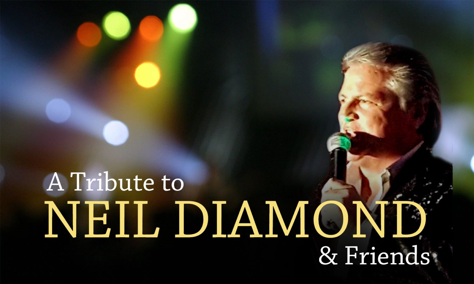 A Tribute to Neil Diamond & Friends banner image