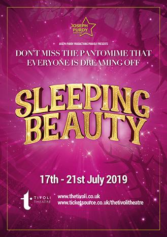 Sleeping Beauty - Aberdeens Summer Pantomime banner image