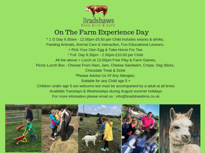 Bradshaws - 1/2 day on the Farm Experience banner image