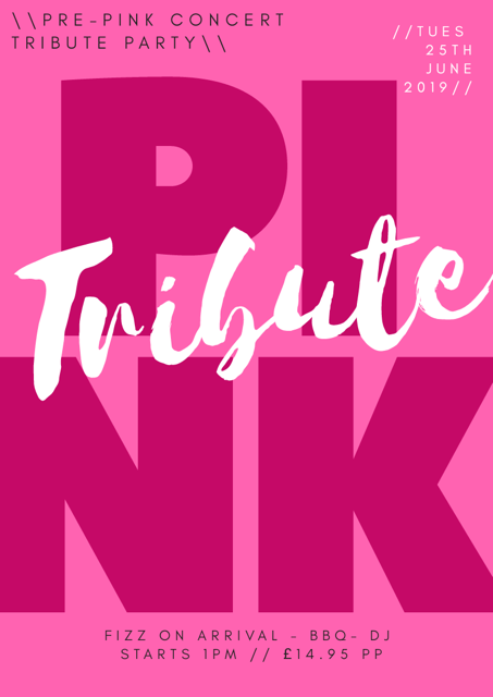 Tribute Party P!nk Concert banner image