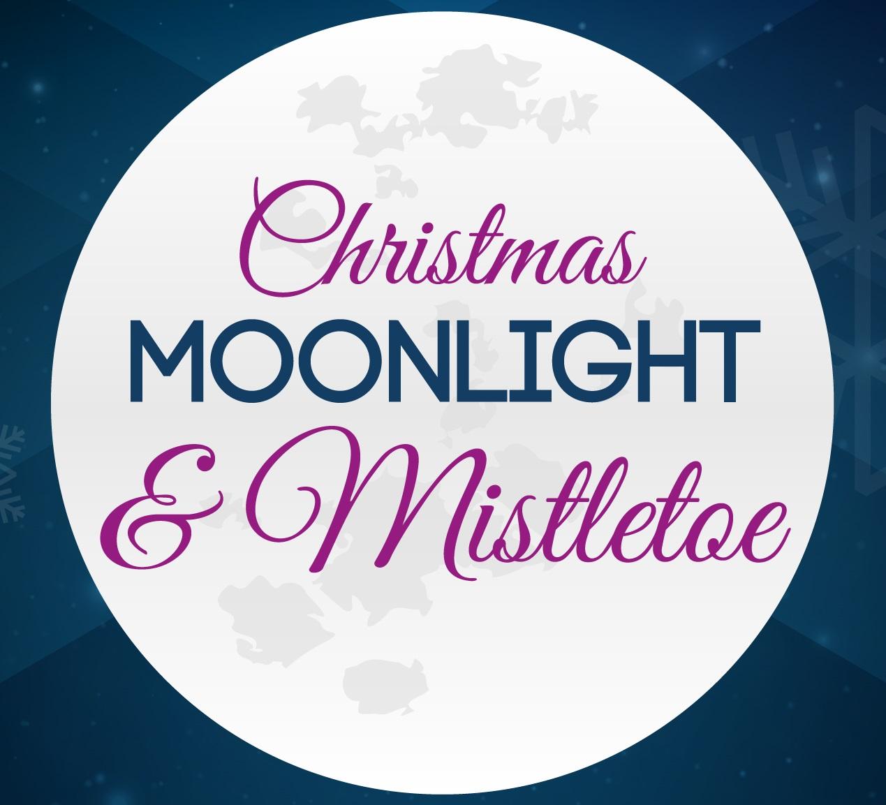Moonlight & Mistletoe banner image