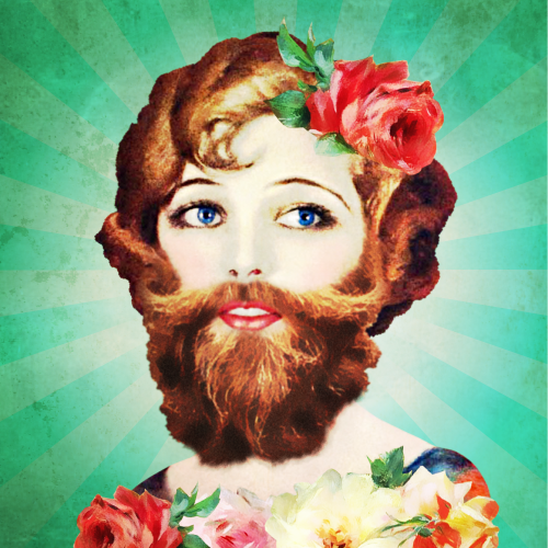 Bearded Lady Daytime Comedy, Worcester banner image