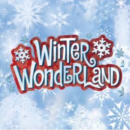 Winter Wonderland banner image